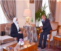 «زايد» و«أبوالغيط» يبحثان سبل استمرار تقديم الدعم الطبي للدول العربية