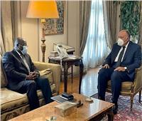 وزير الخارجية يبحث مع نظيره الغيني سبل تعزيز التعاون..صور
