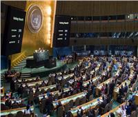 «المصري للفكر والدراسات»: مصر حققت قفزات في ملف حقوق الإنسان   فيديو