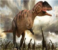 احتفاء عالمي باكتشاف أول «ديناصور» ترقد على صغارها
