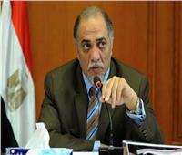 رئيس «تضامن النواب»: مصر السند والشقيقة الكبرى في وقت الشدة