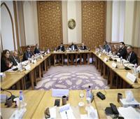 «شكري» يسلم «القومي لحقوق الإنسان» تعقيب الحكومة على التقرير السنوي للمجلس