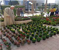 رئيسمدينة كفر الدوار يتابع استعدادات «معرض الزهور»