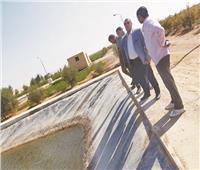لأول مرة في سيناء.. إنتاج الأسماك والأغنام بـ«الريموت كنترول»   صور