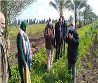 «الزراعة» تستعرض تقريرا حول أنشطة معهد بحوث أمراض النباتات خلال فبراير
