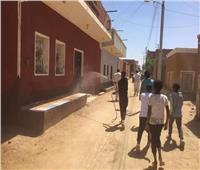 تعقيم وتطهير قريتي «توشكى وأبوسمبل» في أسوان
