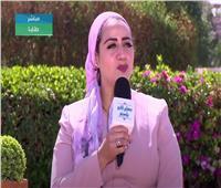 فيديو  نائب محافظ جنوب سيناء: الأكاديمية الوطنية بيت الخبرة الأول لصناعة الكوادر