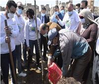 محافظ أسيوط يشهد انطلاق فعاليات زراعة 1000 شجرة