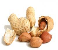«أخطر أنواع المكسرات»..خبيرة تغذية تحذر من تناول الفول السوداني واللوز