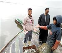 بحيرات مصر | الوصول للاكتفاء الذاتي من الأسماك بنسبة ٨٥٪