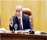 «المصيلحي» يتفقد مشروعات تموينية بجنوب سيناء اليوم