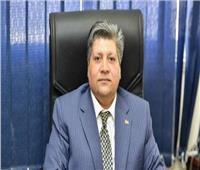 التنمية المحلية: «أيادي مصر» تحقق رؤية مشروع تطوير الريف المصري