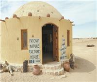 يرتاده الآلاف.. «البيت الثقافي» تاريخ يحكي قصة الفيوم