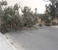 عاصفة ترابية شديدة تضرب قرى ومدن الغربية