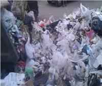 أهالي شبرا الخيمة بالقليوبية يستغيثون من تلال القمامة| صور