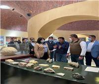 نائبة وزير السياحة والآثار: الفيوم متحف بيئي مفتوح