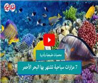 فيديوجراف| محميات طبيعية وأديرة.. 7 مزارات سياحية في البحر الأحمر