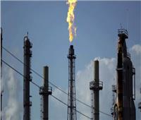 الحكومة تكشف حقيقة تراجع عدد الشحنات المصرية المُصدرة من «الغاز المسال»