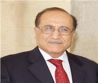 العناني: مصر والأردن ترسمان منهجية جديدة للتعامل العربي المشترك