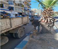 رئيس مدينة مرسى مطروح:رفع 22 ألف طن قمامة خلال شهرين