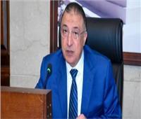 محافظ الإسكندرية يُكرم أمهات الشهداء في احتفالية يوم المرأة المصرية
