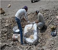 اكتشاف علمي لسمكة «المنشار» بصحراء مصر الغربية يرجع إلي 70 مليون سنة | فيديو