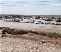 أجواء ممطرة على شمال سيناء
