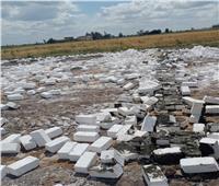 إزالة 12 حالة تعدي بالبناء على الأراضي الزراعية بالبحيرة  صور