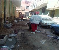 حملات نظافة وإزالة مخلفات في البدرشين بالجيزة | صور
