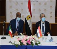 453 مليون جنيه مصري لرفع قدرة خط الربط الكهربائي بين مصر والسودان
