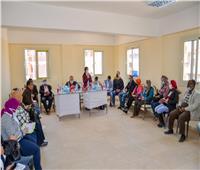 نائب محافظ الإسكندرية: اجتماعات دورية لمتابعة «حياة كريمة» ببرج العرب