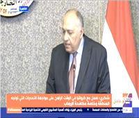 وزير الخارجية: علاقات مصر وكرواتيا تمتاز بالقوة والترابط