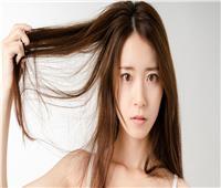 6 نصائح فعالة للتخلص من تقصف الشعر