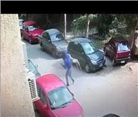 بالصور.. كلب مفترس يهاجم المواطنين بحدائق القبة