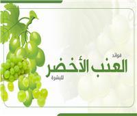 إنفوجراف| فوائد العنب الأخضر للبشرة