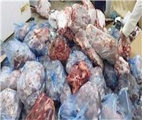 ضبط 131 طن لحوم ودواجن وأسماك غير صالحة بالمحافظات..خلال شهر