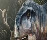 العثور على جمجمة ديناصور منذ 85 مليون عام بالأرجنتين