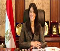 وزيرة التعاون الدولي تشارك في جلسة افتراضية لمؤسسة التمويل الدولية
