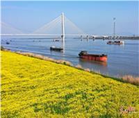 مناظر ريفية جميلة في مناطق صينية مختلفة