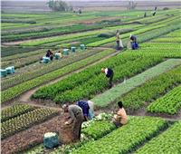 فيديو  محمد القرش: الدولة المصرية تعمل على تنمية القطاع الزراعي
