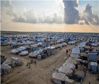اعتقال 125 عنصراً من تنظيم داعش في مخيم الهول