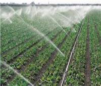 مشروع الدلتا الجديدة.. مستقبل التنمية الزراعية للوطن