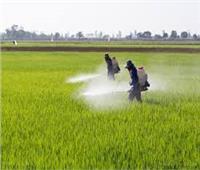 «الزراعة» تنظم دورةحول الاستخدام الآمن لمبيدات الحشائش بالغربية