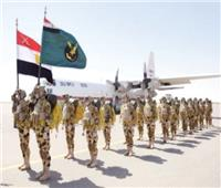 «نسور النيل 2» تدريب جوي مصري سوداني مشترك