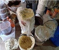 إعدام 2 طن أغذية فاسدة داخل مخزن ومصنع بالشرقية.. صور
