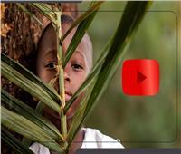 اليوم العالمي للضمير «أصل الفكرة».. فيديوجراف