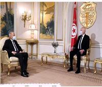 الرئيس التونسي يبحث مع«أبو الغيط»الأزمات العربية وتطوير الجامعة