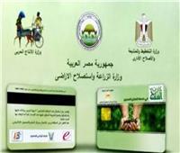 زراعة الإسكندرية تستعد لإطلاق منظومة «كارت الفلاح الذكي» لخدمة المزارعين