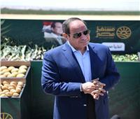 السيسي: إضافة 200 ألف فدان للرقعة الزراعية بنهاية العام الحالي