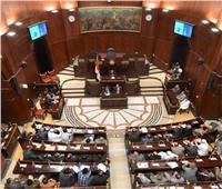 برلمانية الوفد: نفوض الرئيس باتخاذ مايراه مناسبًا لحفظ حقوق مصر